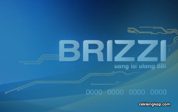 Cara Cek Saldo Brizzi Secara Online dan Offline