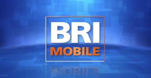 Cek Saldo Brizzi Menggunakan Aplikasi BRI Mobile
