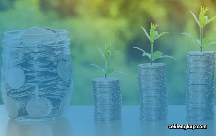 Apa Itu Investasi? Jenis - Jenis, Tujuan, Manfaat dan Ragam Risiko Investasi